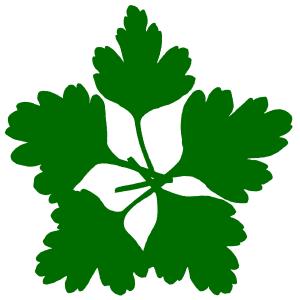 grünstern